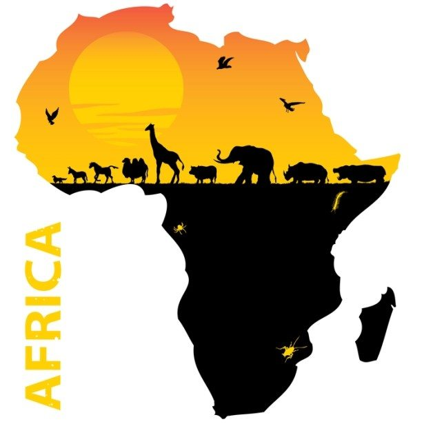 Image result for africa pictures