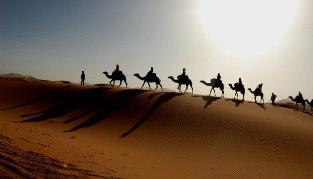 Sahara Desert Map Location Animals Oasis History Quick Facts