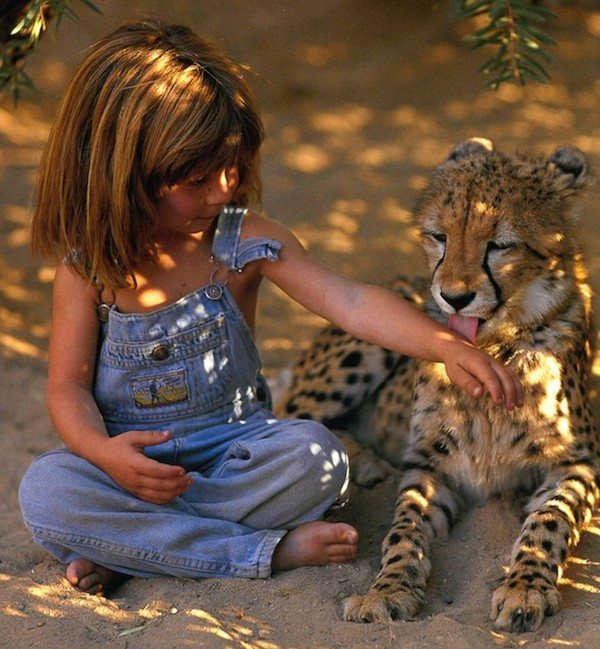 Girl with wild animals 12