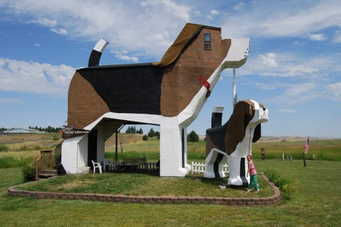 Dog-Shaped-Building
