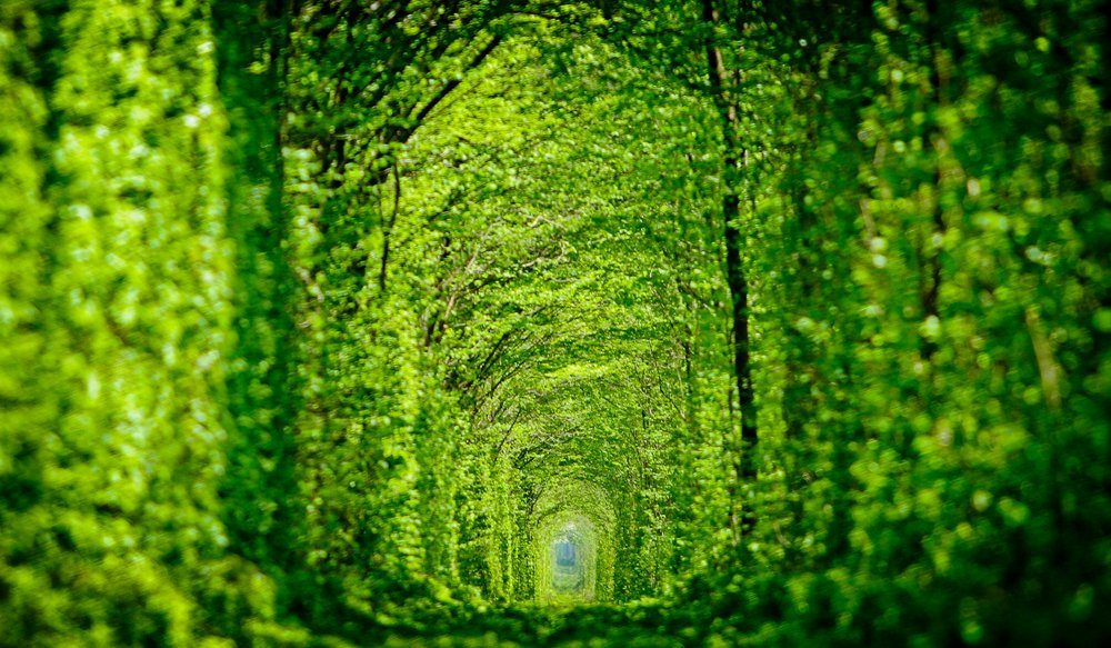 Tunnel of love amazing places