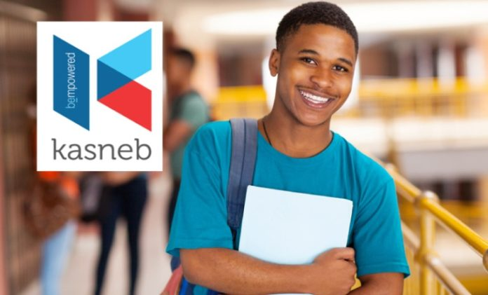 A Detailed Outline of KASNEB Courses To Choose From and Their Durations